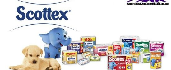 Comprar Acciones de Kimberly Clark Corporation